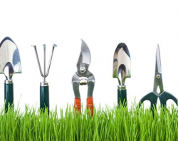 Four Tips for Choosing the Best Gardening Tool