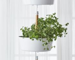 A great planter from Ikea for growing indoors and it won't take up counter space.